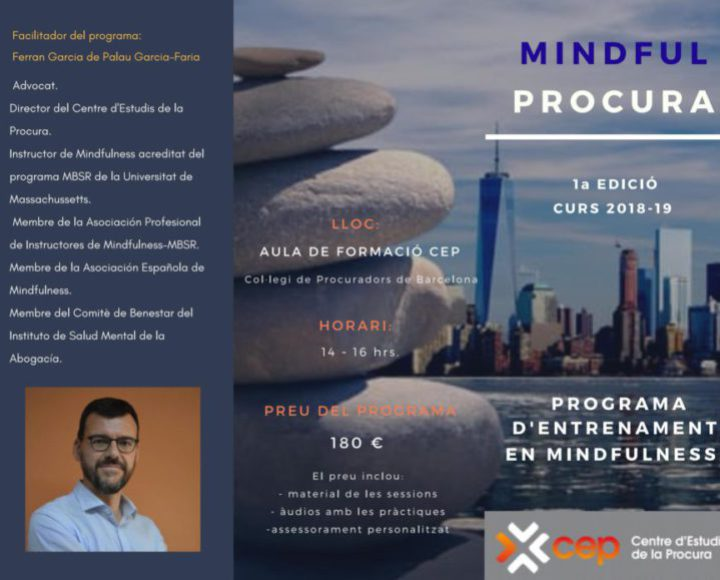 http://www.psicotools.es/wp-content/uploads/2018/10/MINDFUL-PROCURA_Page_1-e1538393525868-720x580.jpeg